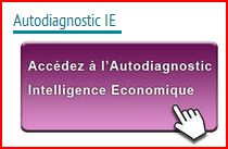 Autodiagnostic IE