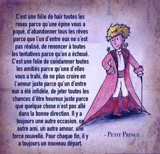 Petit prince courage